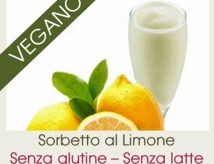 Sorbetto Vegan in Promo