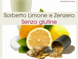 Preparato per Sorbetto in Sconto al 40%