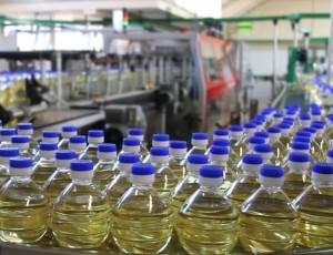 Olio di semi di Girasole con il 5% di Sconto