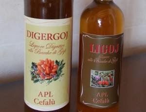 Liquore LIGOJ & DIGERGOJ con il 5% di sconto